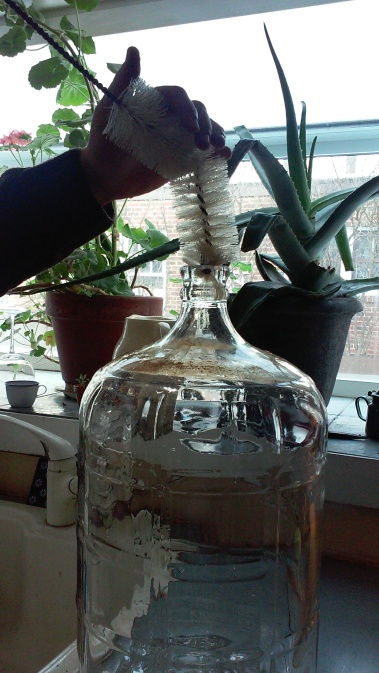The Carboy-and everything else- needs to be carefully cleansed.