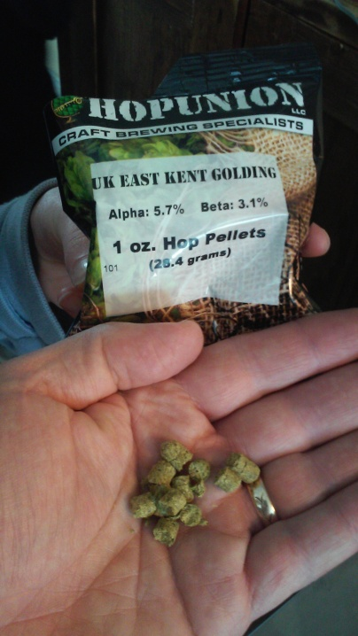 Next Comes the East Kent Golding Hops