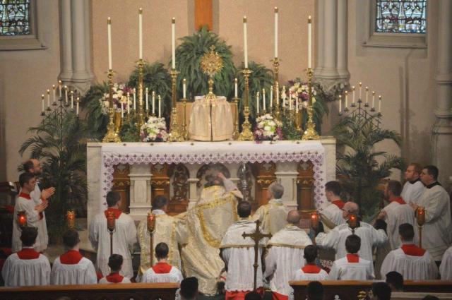 Cardinal Burke Insensing Blessed Sacrament